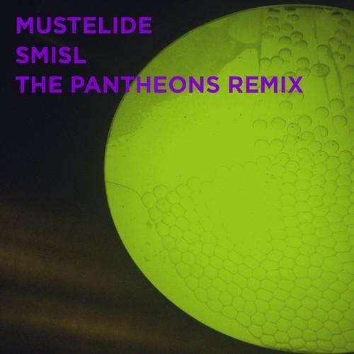 Mustelide - Smisl (The Pantheons Remix)